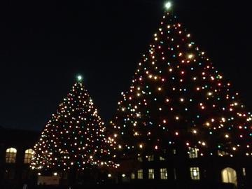 立教大学池袋キャンパスクリスマス.jpg