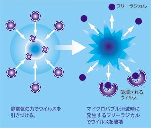 マイクロバブル&フリーラジカル.jpg